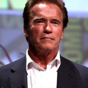 T3 Arnold Schwarzenegger